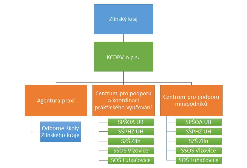 Organizacni_struktura